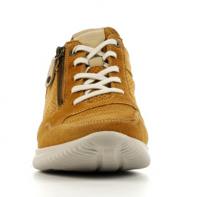 hartjes.112062.5008.curry.2